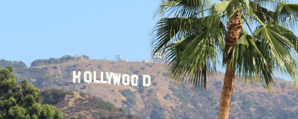 hollywood tropical