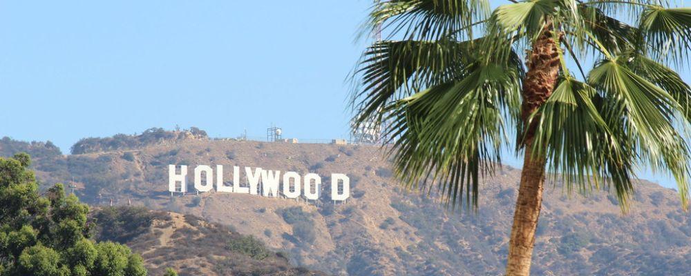 hollywood tropical