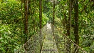Pont suspendu au Costa Rica