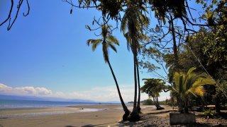 Playa Nicuesa : voyage au Sud du Costa Rica