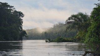 Tortuguero et les Caraibes