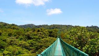Canopée a Monteverde au Costa Rica