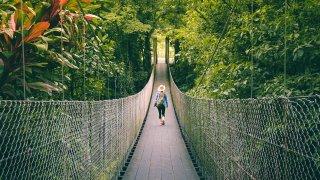 Top 5 des activités à ne pas manquer au Costa Rica
