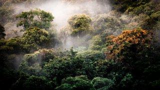 Parcs nationaux et réserves