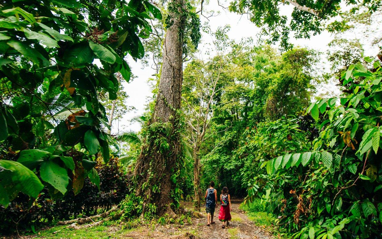 Parc national de Corcovado au Costa Rica