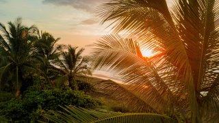Coronavirus au Costa Rica : informations et actualités