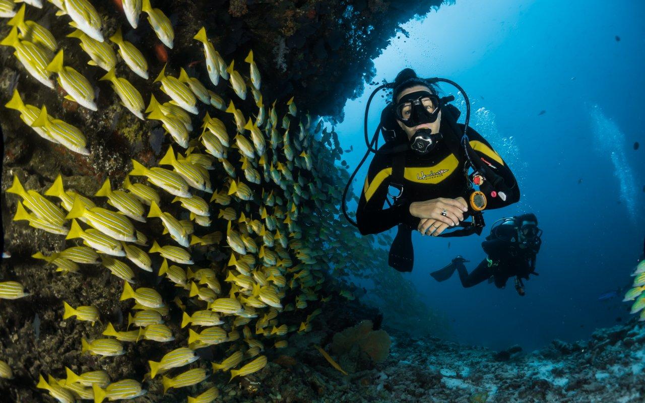 Plongée au Costa Rica