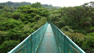 ponts suspendus Monteverde