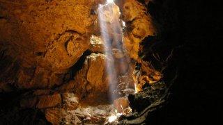 caves venado