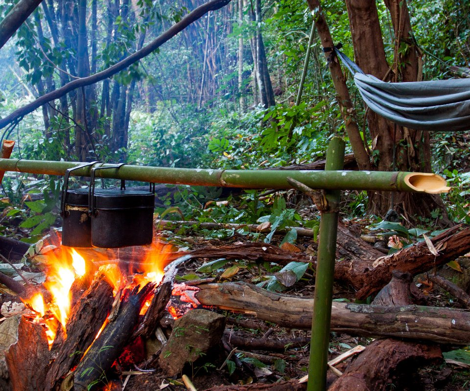 survie jungle costa rica
